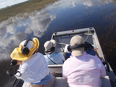 airboat tours miami