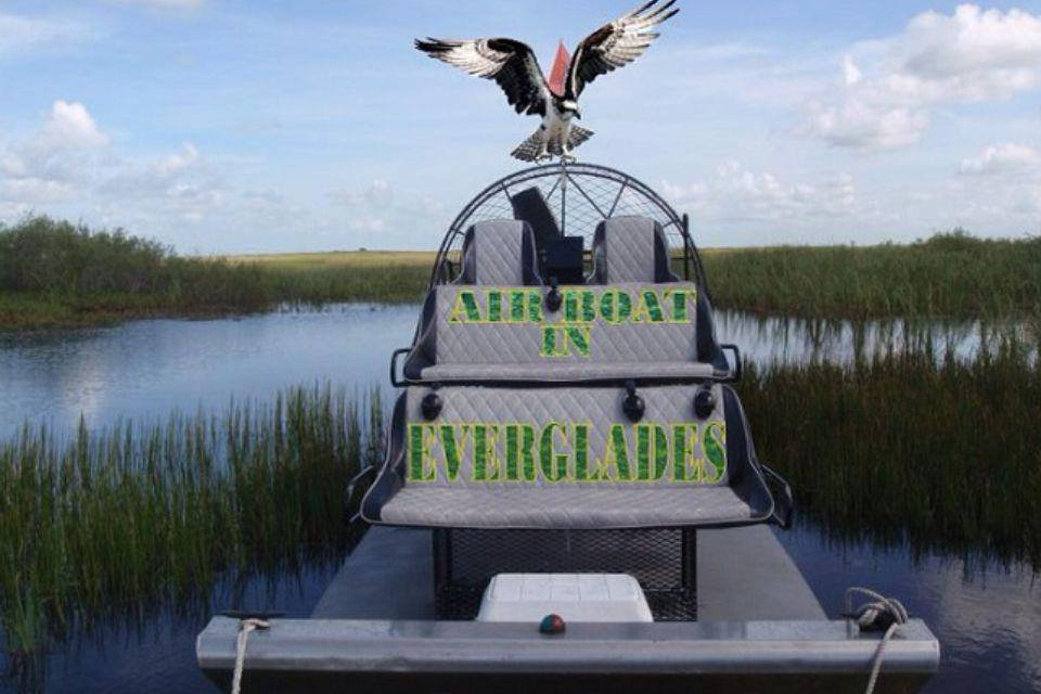 Shark Valley Airboat Tours In Miami Florida East Everglades