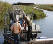best everglades tours