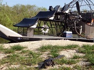 airboat tours florida