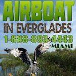 Airboat In Everglades Airboat In Everglades Explore The