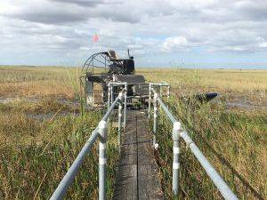 airboat ride everglades