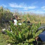 Everglades Prtices