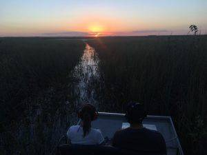Sunset Airboat Tour in Everglades