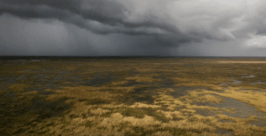 airboat tour in rain