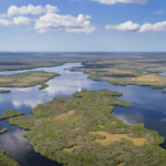 florida everglades ariel view