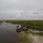airboat everglades