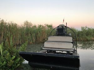 AIRBOAT TOUR 6