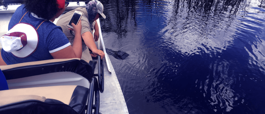 Find Out More About Miami S Everglades Airboat Tours