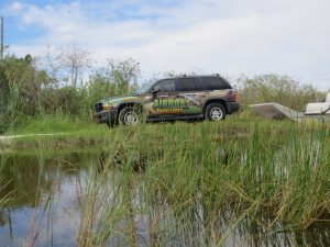 High Quality Everglades Images