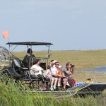 High Quality Everglades Images