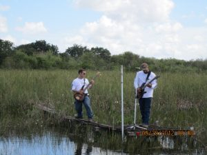 Real Everglades Videos