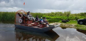 everglades miami tour