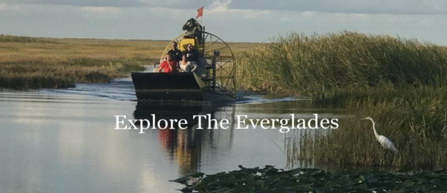 explore the everglades