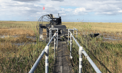 miami everglades airboat tour