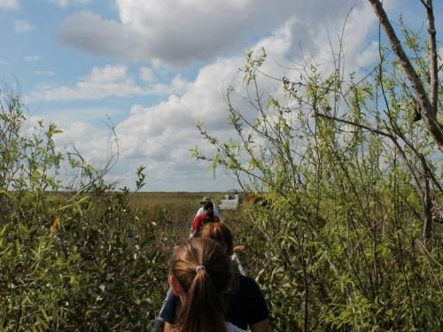 everglades tours, tours miami